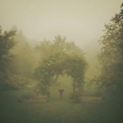 Paul J. Toussaint -  - 1st Place, Nature