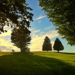 Chris Pecorero -  - 1st Place, Landscape