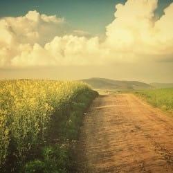 AndrewProudlove07-Landscape-Nature
