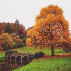 CraigHarvey03-Seasons