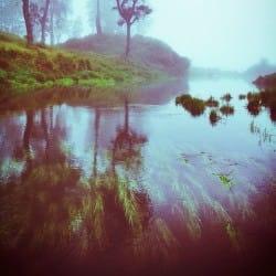 HerBasukiMargono04-Nature