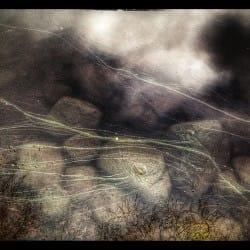 MrVolk03--nature