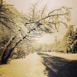 NatashaLuthra03-Seasons